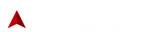 BlackNorth Initiative
